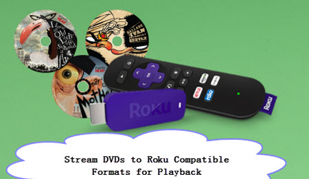 copy-dvd-to-roku