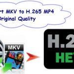 convert-mkv-to-h265