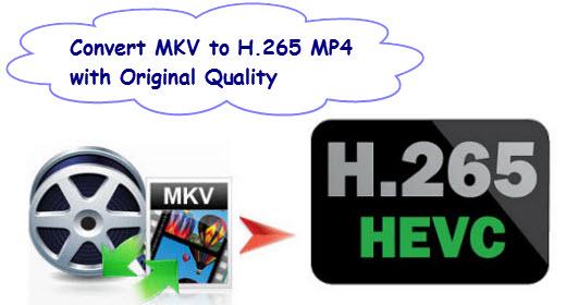 mkv-to-h265-converter